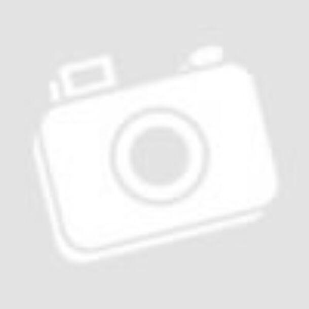 HARRY POTTER - Kviddics mintás csomagolópapír (MinaLima design)