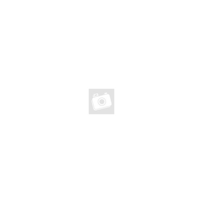 Harry Potter párnahuzat - Roxforti kastély BubbleStore